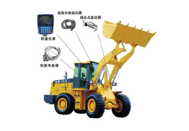 Scientific Wheel Loader Scale System 200kg Min Capacity Easily Installed
